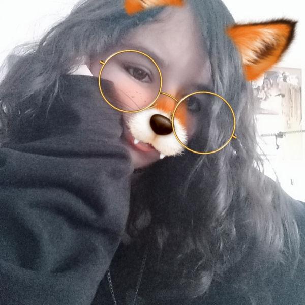 Catycat-image