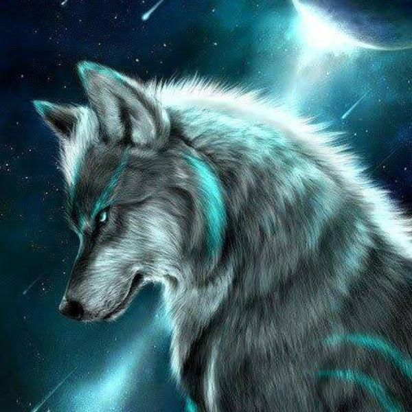 Tyron-image